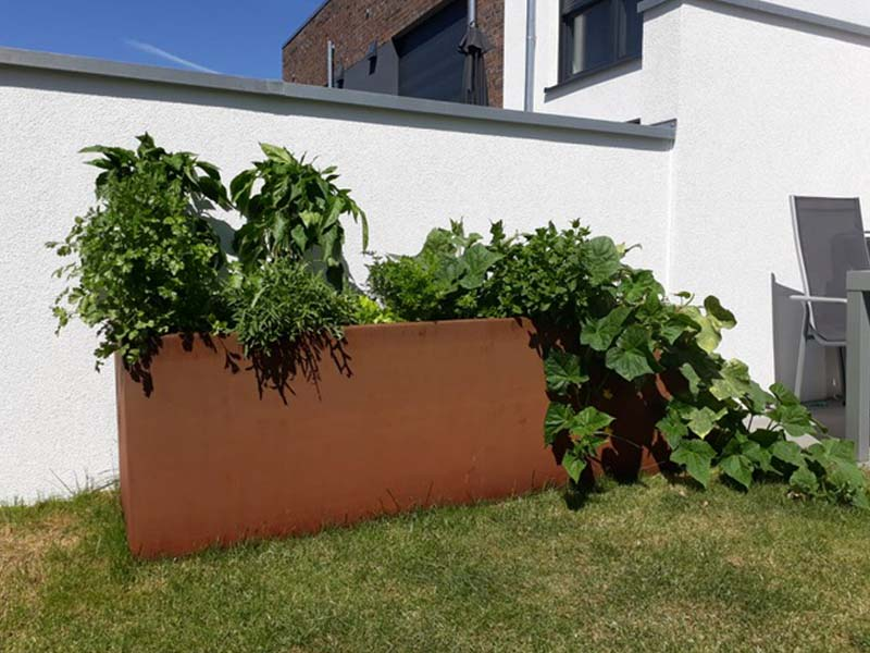 Gemüsehochbeet